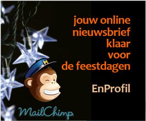 workshop mailchimp online nieuwsbrief
